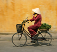 Vietnam, Hanoi cyclist