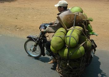 Vietnam, Jackfruit motorbike