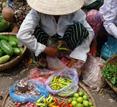 Vietnam, Hanoi street vendor