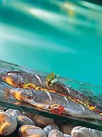Shanti Maurice Spa, fresh fish