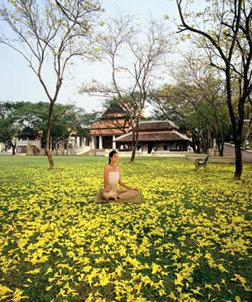 Mandarin Oriental Dhara Dhevi, Chiang Mai, autumn meditation