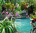 Hotel Arenal Kioro, La Fortuna - pool